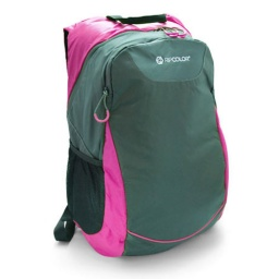 MOCHILA LAPTOP 17'' ROSADA RIPCOLOR